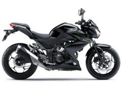kawasaki-z250-motorcyclediaries