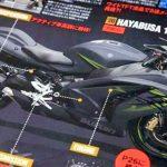 suzuki hayabusa motorcyclediaries