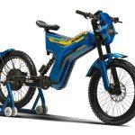 Polarity- S2K-2-motorcyclediaries