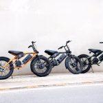 Greenvolt Mantis Motorcyclediaries